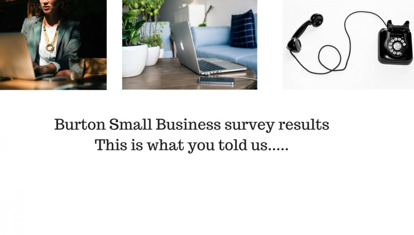 Burton Small Business survey
